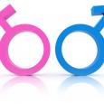 uomini vs donne
